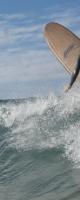 Corktop Dynocore Longboard Reo