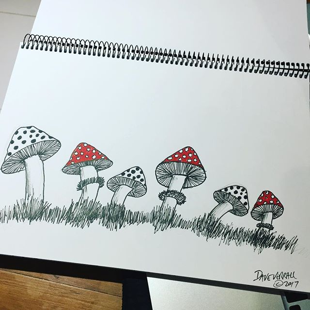 #mushroom #fungi #drawing #homework #surfboardart