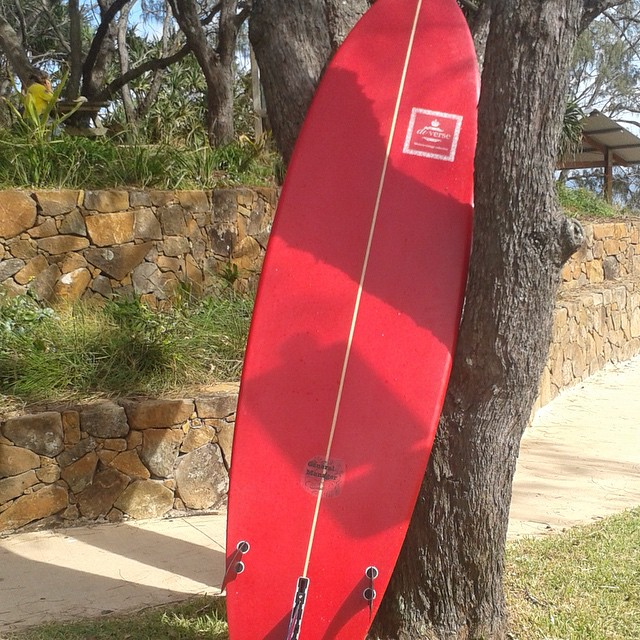 #gm #treelife #shade #hotday #surfboards #protect #fromheat #red