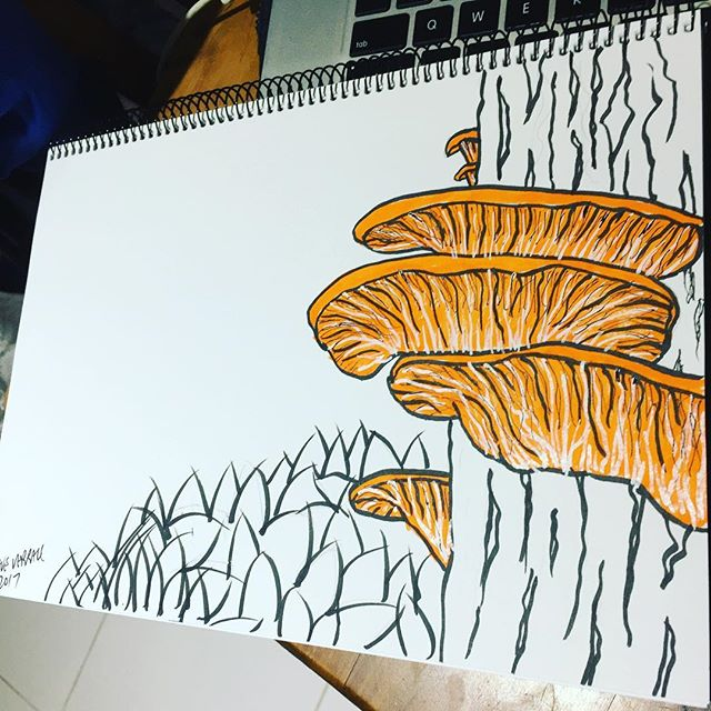 #fungi #growth #boardart #homework